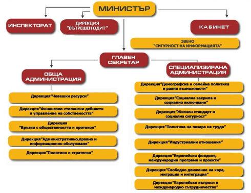 Структурата на социалното министерство