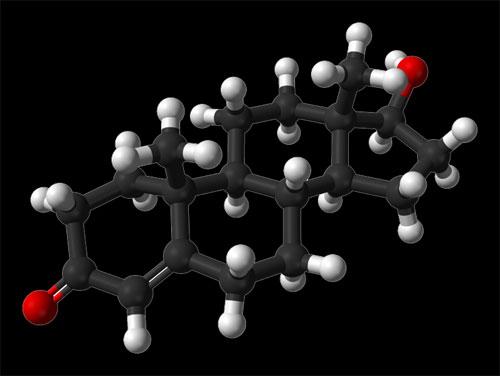 Молекулата на тестостерона