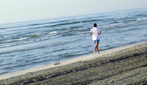 Тичане край плажа