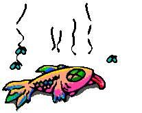 Смрадлива риба