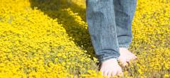 10 снимки: пролет