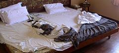 Неоправено легло