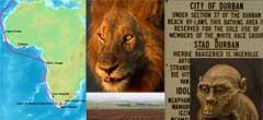 10 неща, които не знаеш за Южна Африка