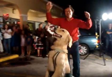 Танцуващото куче