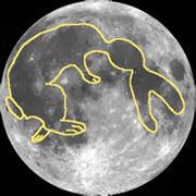 Лунният заек