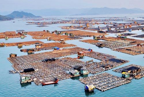 Плаващите рибарски градове на Китай