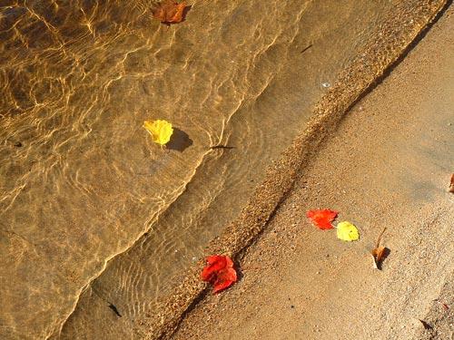 Вдъхновение за уикенда в началото на есента