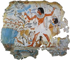 Форма на бельо в човешката история