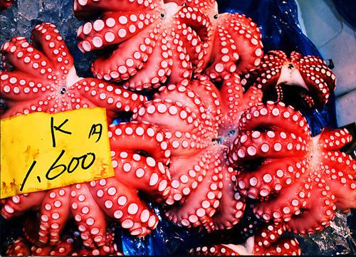 Рибният пазар в Токио