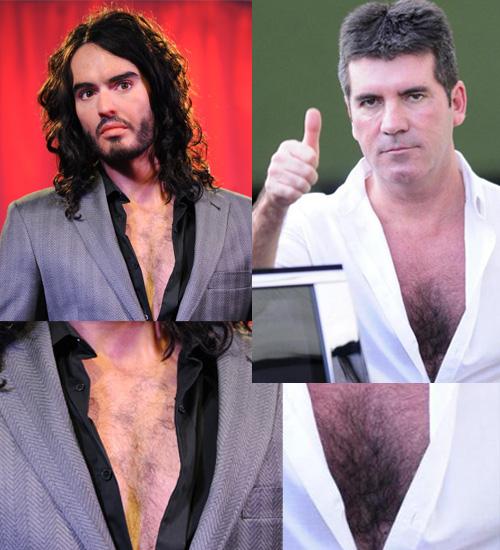 Мъжете, гърдите и космите